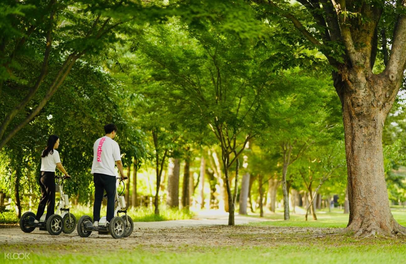 싱글자전거, 커플자전거, 가족자전거, 그리고 전기 자전거까지 다양하게 마련되어 있으니 편안하고도 낭만적인 방법으로 남이섬에서의 시간을 즐기세요.